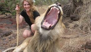 UATW_Amelia Grieve Putland_Walking With Lions